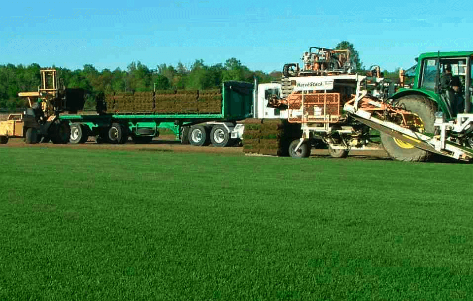 You pickup sod farm